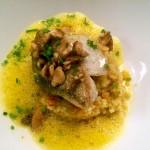 Köstlich: Zander mi Nusskruste auf Couscous und Curryschaum.